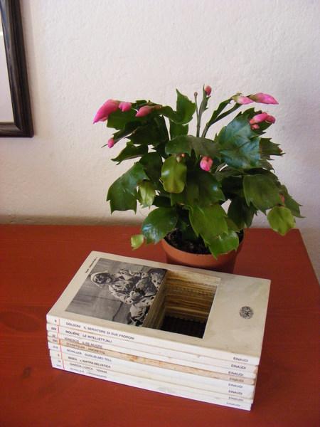 Vaza od knjige