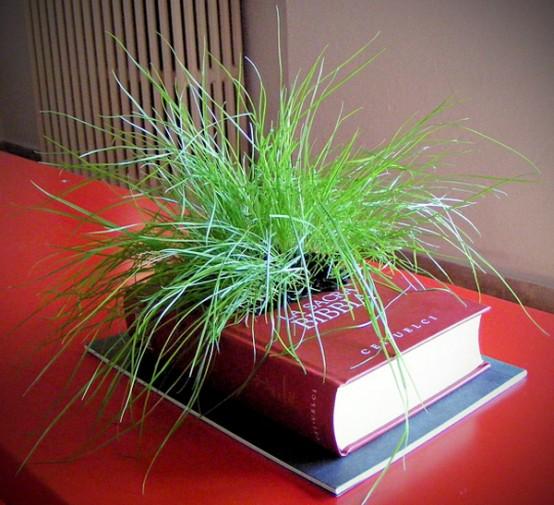 knjiga za biljke 5