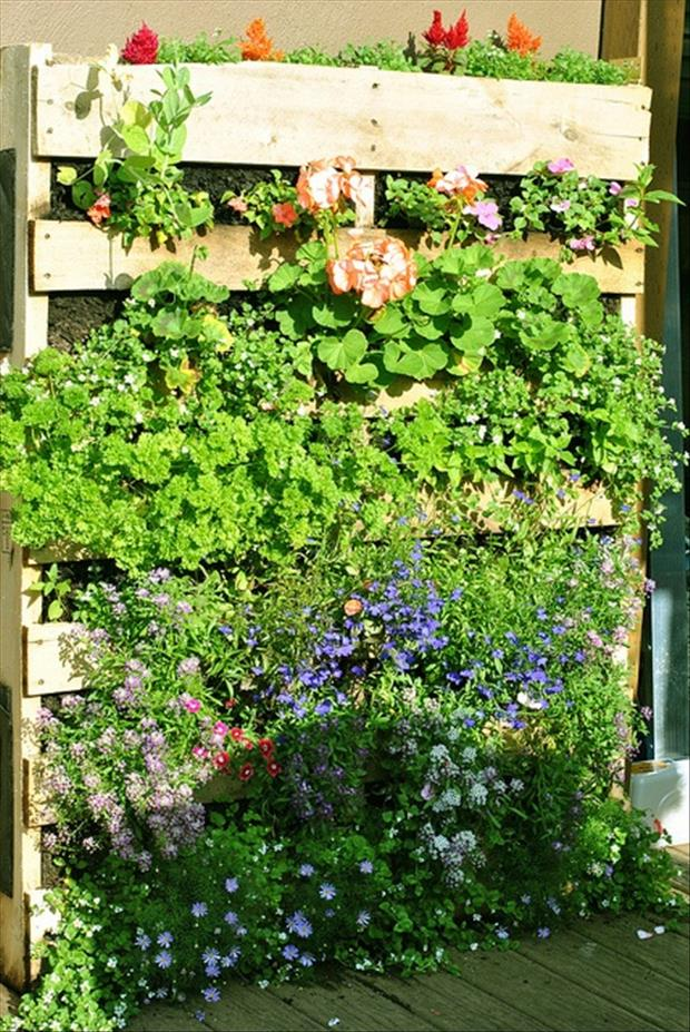 pallets-used-in-the-garden